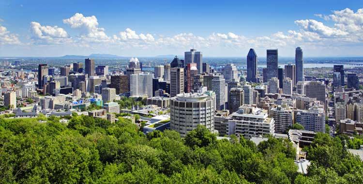 White Arkitekter Montreal